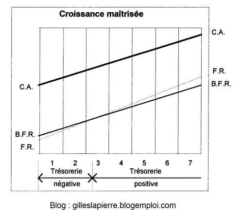 Croissance maitrisée - Gilles LAPIERRE