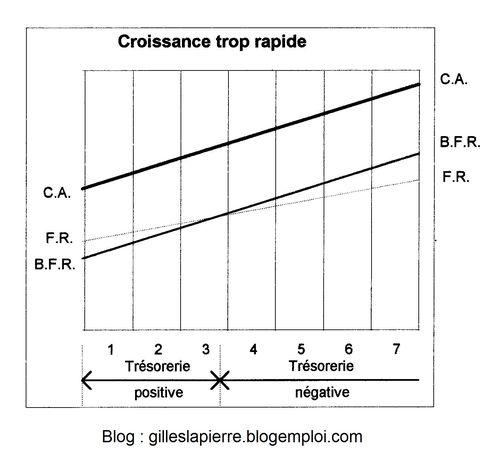 Croissance trop rapide - Gilles LAPIERRE