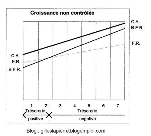 Croissance non contrôlée - Gilles LAPIERRE